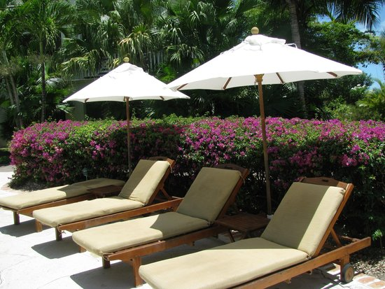 Royal West Indies Resort : by the quiet pool