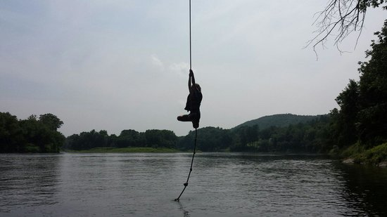 Rope Swing On The Ct River Picture Of North Star Canoe Kayak