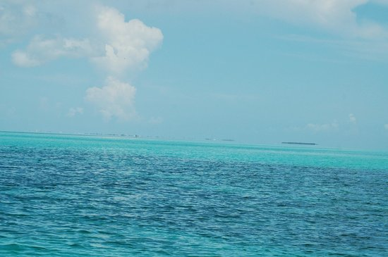 Easy Day Charters : Bliss