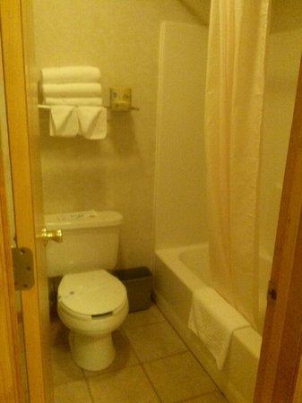 Americas Best Value Inn & Suites Lake George: bathroom