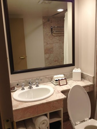 Dauphine Orleans Hotel : Small but clean bathroom