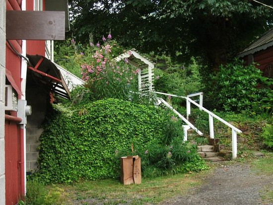 Patty's Place at 19 Mile House: The steps to take to get down to the restrooms