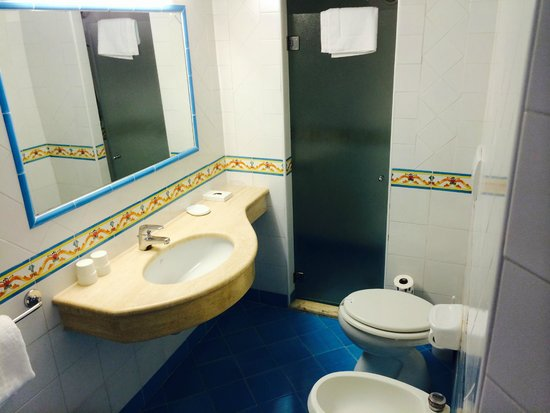 Continental Mare Hotel: View into bathroom..