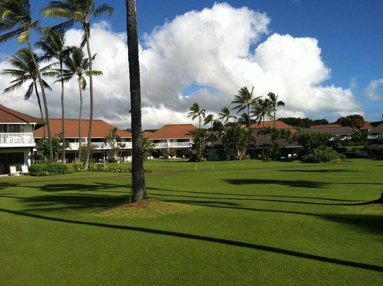 Kiahuna Plantation Resort: The lawn near the beach
