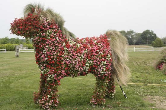 Flower horse sculpture at Harbes Family Farm.