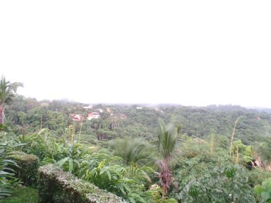 La Mariposa Hotel : vista del balcon