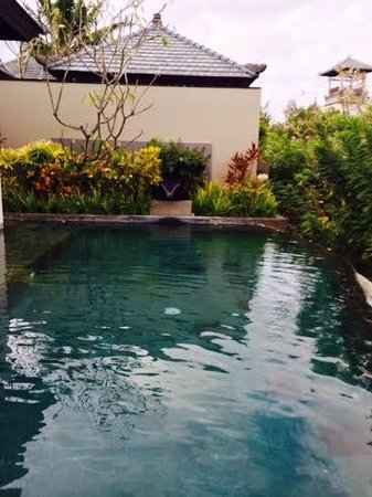 Banyan Tree Ungasan, Bali: private pool