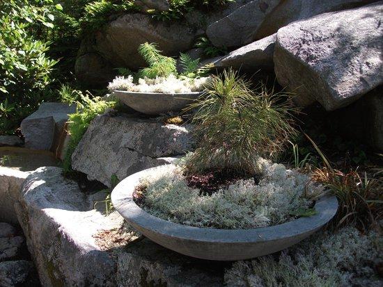 Coastal Maine Botanical Gardens: Garden view