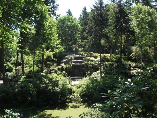 Coastal Maine Botanical Gardens : Garden view