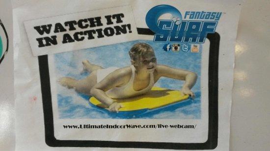 Fantasy Surf: Online Link