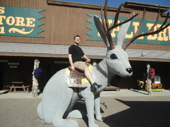 Wall Drug : Rite Aid doesn't have jackalopes!