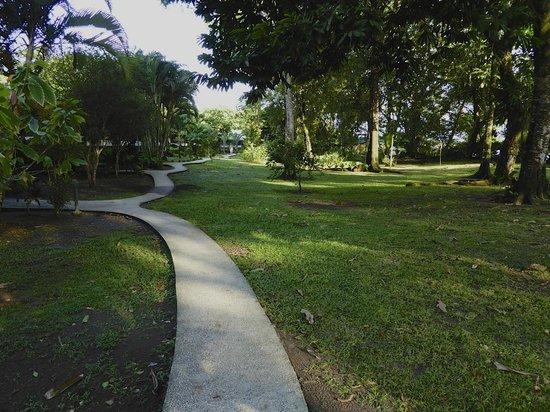 Mawamba Lodge : Sidewalk path from bungalow to reception