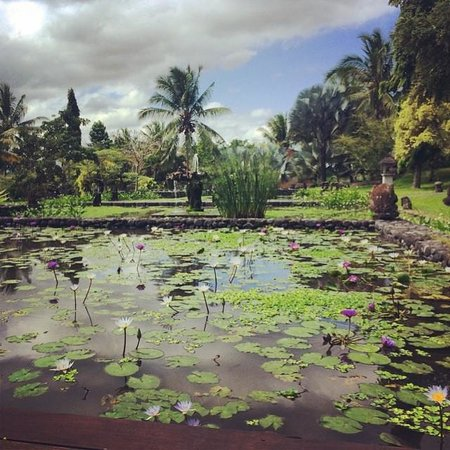 The Chedi Club Tanah Gajah, Ubud, Bali – a GHM hotel: amazing grounds
