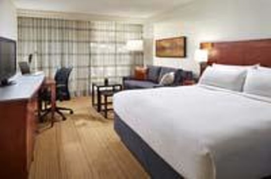 Hotel MdR-A DoubleTree by Hilton Hotel : Kind standard room