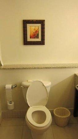 Sandals Grande St. Lucian Spa & Beach Resort: bathroom basic, nothing speical