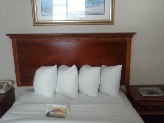 Quality Inn Boardwalk: The Double Bed