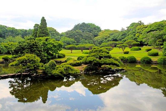 Shinjuku Gyoen National Garden #2