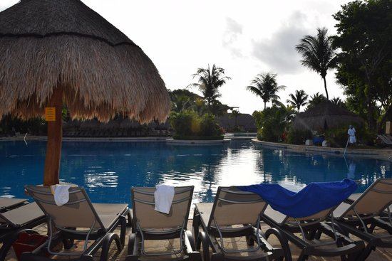 Iberostar Tucan Hotel : Pool area