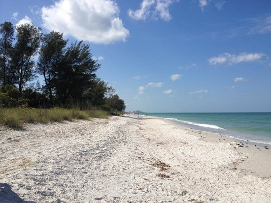 Delnor-Wiggins Pass State Park: Endless sand