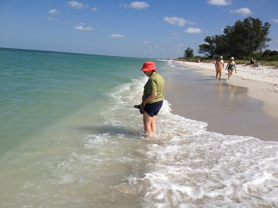 Delnor-Wiggins Pass State Park: Plenty of opportunity to refresh and look for shells