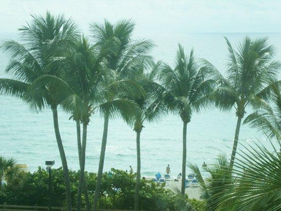 Four Points by Sheraton Miami Beach : Desde mi habitación
