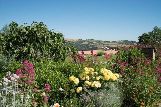 Agriturismo Podere Prasiano: Beautiful garden