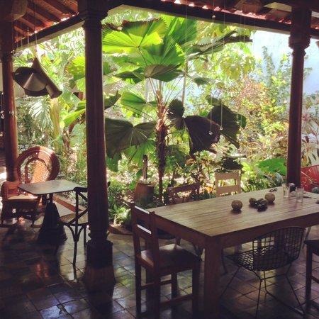 Espressonista Specialty Coffeebar and Restaurant: Patio/Garden Space