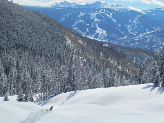 Kieper Guides LLC: Beaver Creek Ski Area