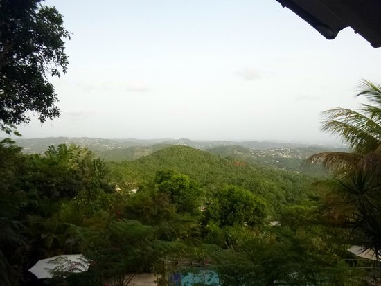 El Escondido Guest House : View from the bench above the pool
