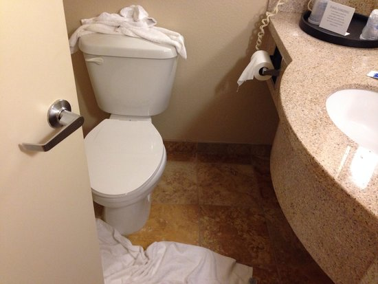 BEST WESTERN PLUS Daphne Inn & Suites: Unclean bathroom
