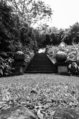 Brief Garden - Bevis Bawa : You can spend hours marveling at the garden