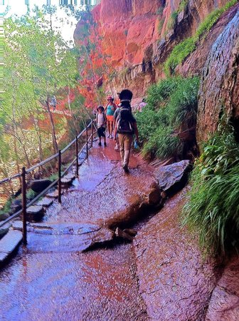 Tour Zion Bryce In One Day