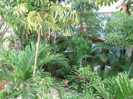 Grand Oasis Palm : spa outside area