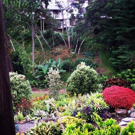 Kula Lodge Botaninal Gardens