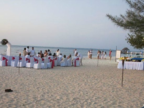 Grand Oasis Palm : wedding
