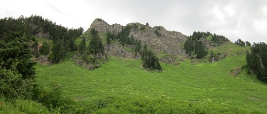 Sauk Mountain Trail : This is where the trail goes ...