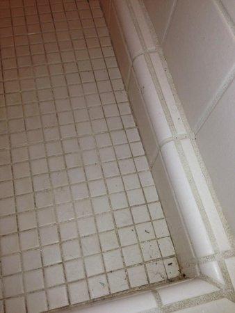 Winema Lodge: Shower Stall
