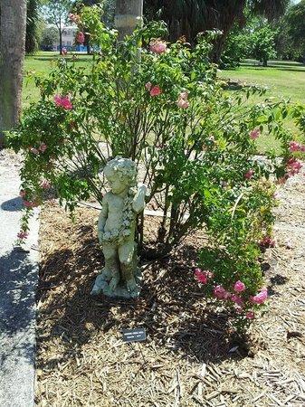 The Ringling: Little Cherub in The Rose Garden