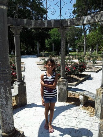 The Ringling: A Rose in the Garden :)
