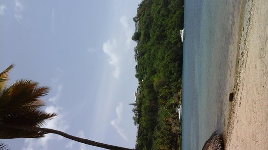 Marigot Beach Club and Dive Resort : Bay view