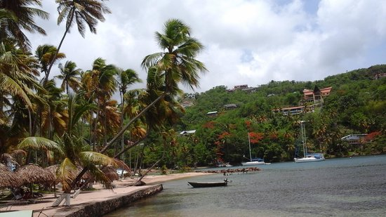 Marigot Beach Club and Dive Resort: Looking at Mango Beach