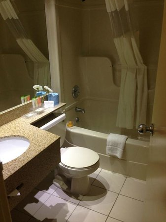 Park Inn By Radisson Toronto-Markham : Semi-remodeled bathroom