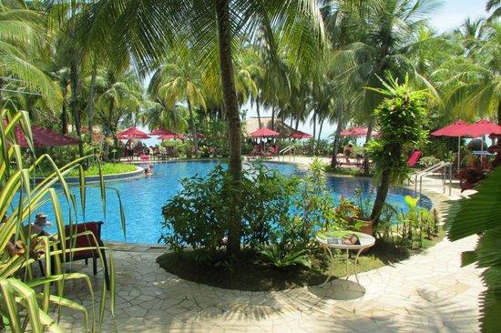 PARKROYAL Penang Resort, Malaysia : Idyllic swimming pool