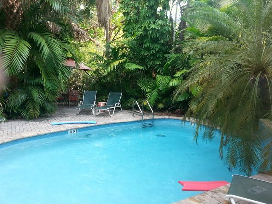 Tropical Inn: Pool