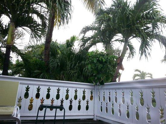Tropical Inn : Balcony