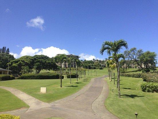 The Ritz-Carlton, Kapalua: Hotel view from beach