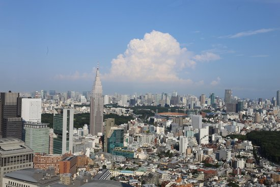 Park Hyatt Tokyo : View from room 4801