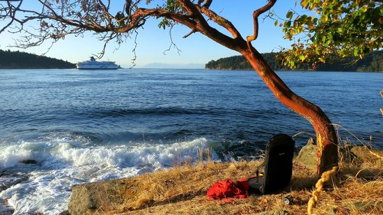 Mayne Island Camping: Fantastic sunset spot in camp