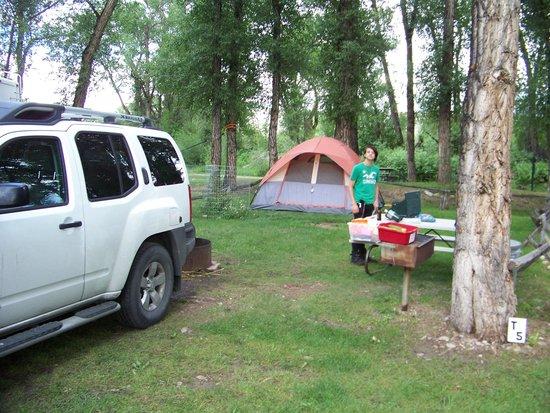 Tall Texan RV Park & Cabins: our site