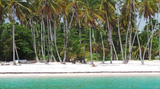 ClubHotel Riu Bambu: vanuit zee richting land kijkend